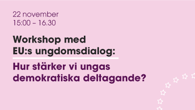 Demokratiworkshop